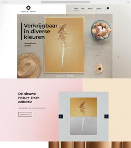 sybrand prints website